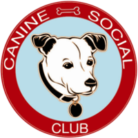 Canine Social Club Chicago